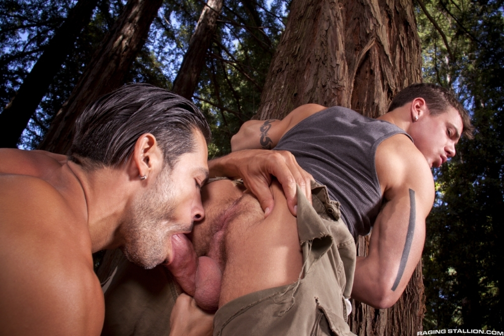 the-woods-part-2-jesse-santana-do-14