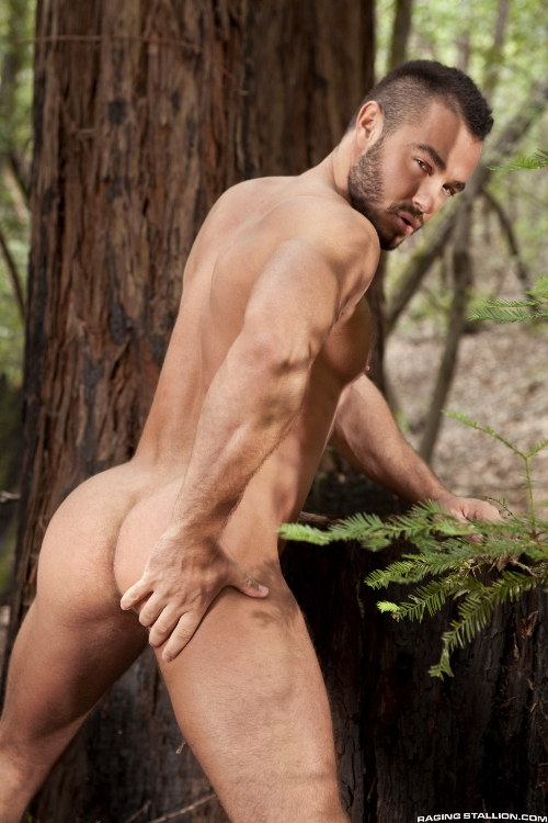 the-woods-part-2-jessy-ares-landon-conrad-2