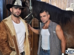 The Stable - Damien Crosse - David Dirdam - Drill My Hole - Men of Gay Porn - Photo #1
