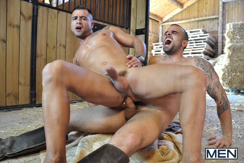 The Stable - Damien Crosse - David Dirdam - Drill My Hole - Men of Gay Porn - Photo #11