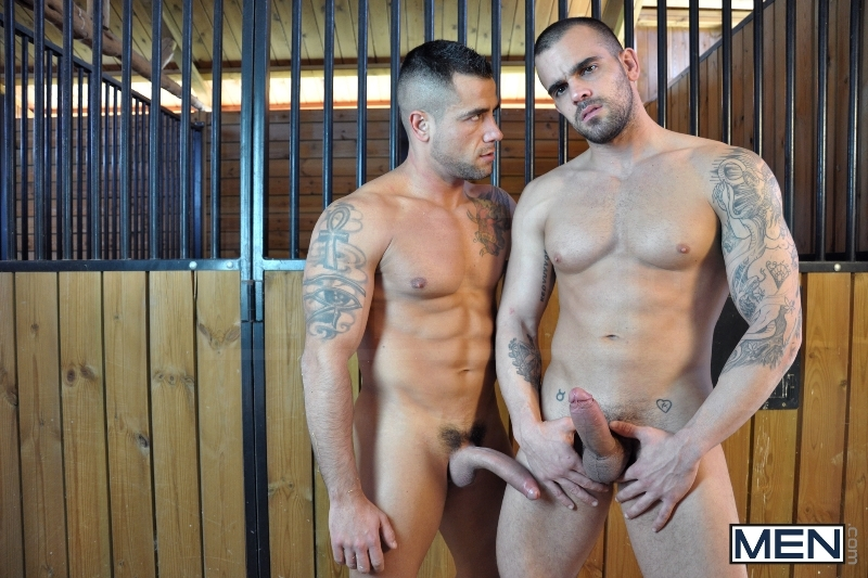 The Stable - Damien Crosse - David Dirdam - Drill My Hole - Men of Gay Porn - Photo #5